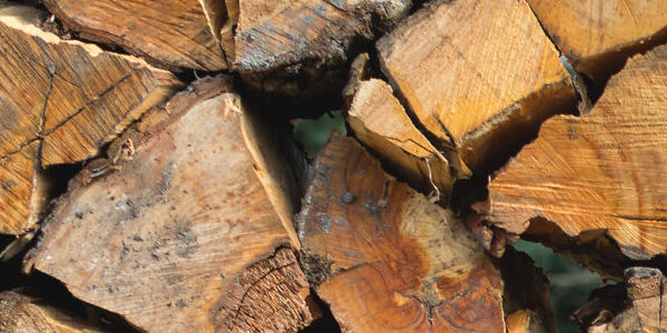 firewood sudbury