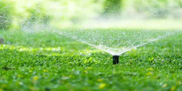 spring irrigation service